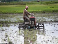 Savoirs, pratiques, innovations et changement de paradigme de l'agriculture dans la région du lac Alaotra (Madagascar)