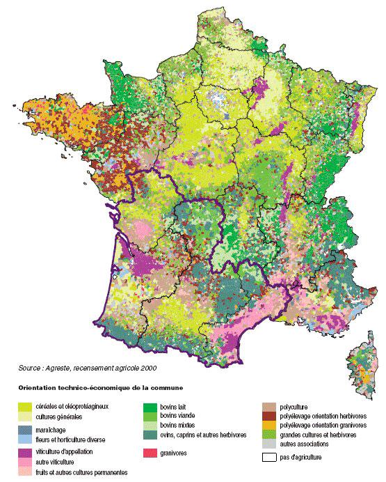 Extrêmement La vigne et le vin en images, cartes et graphiques — Géoconfluences VO97