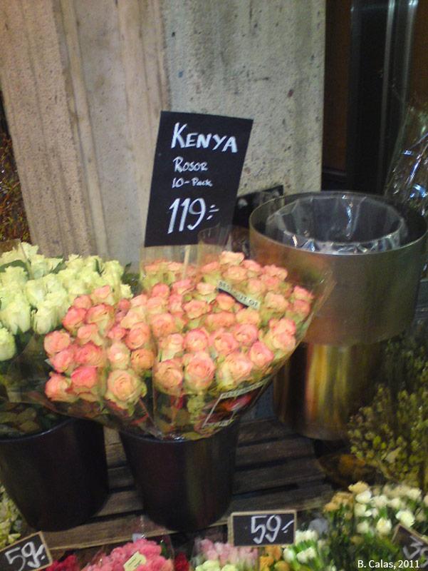 photographie : fleuriste à Stockholm, Bernard Calas 2011