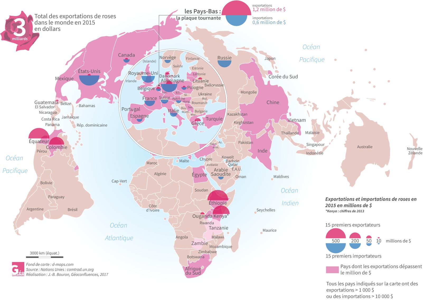 Carte mondialisation roses JB Bouron