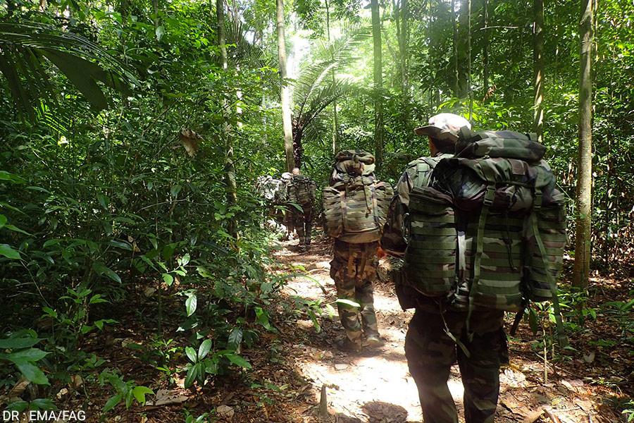 Entraînement des militaires français dans la forêt amazonienne en Guyane