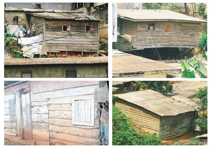 Martin Luther Djatcheu — maisons en planches de bois