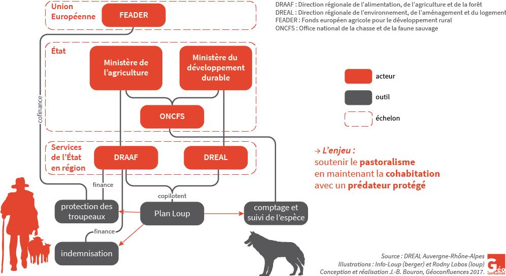Plan Loup - schéma organigramme