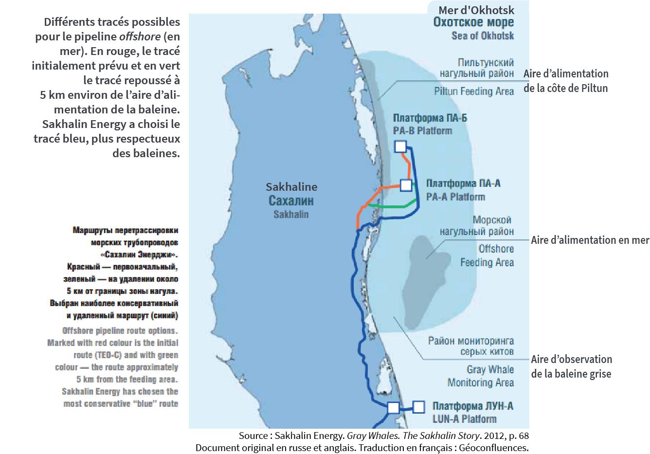 Les aires d'alimentations des baleines au large de Sakhaline