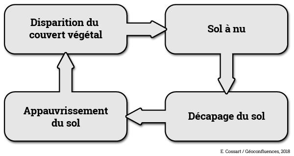 rhexistasie schéma organigramme Étienne Cossart