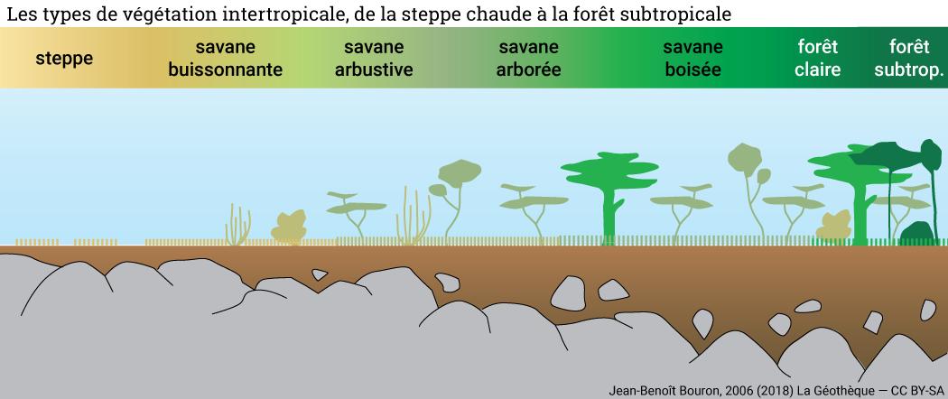 savane buissonnante arbustive arborée boisée forêt claire subtropicale