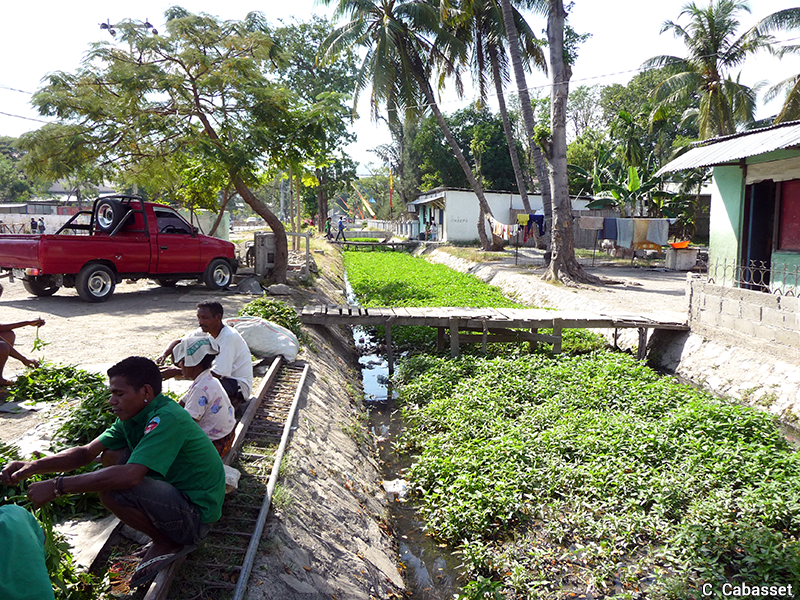 Christine Cabasset — canaux de drainage agriculture urbaine informelle