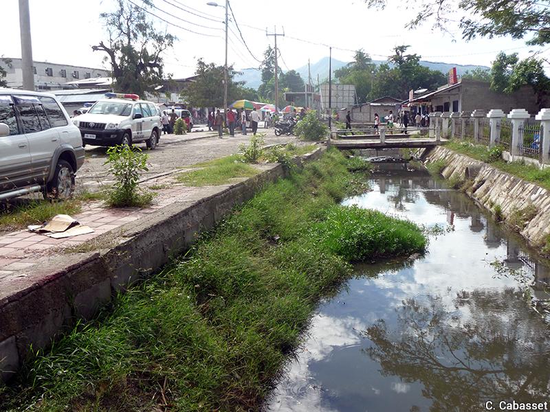 Christine Cabasset — végétalisation spontanée des canaux de drainage