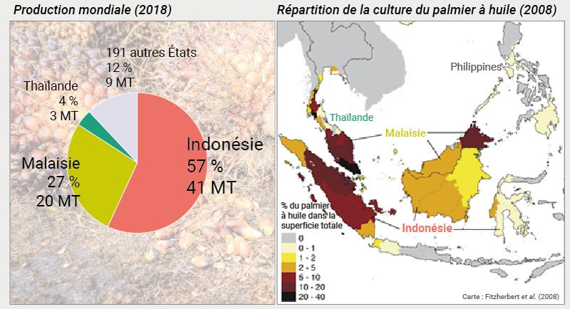 palmier à huile production carte et graphique