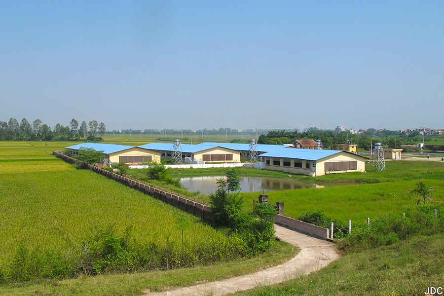 Jean-Daniel Cesaro — ferme commerciale au vietnam