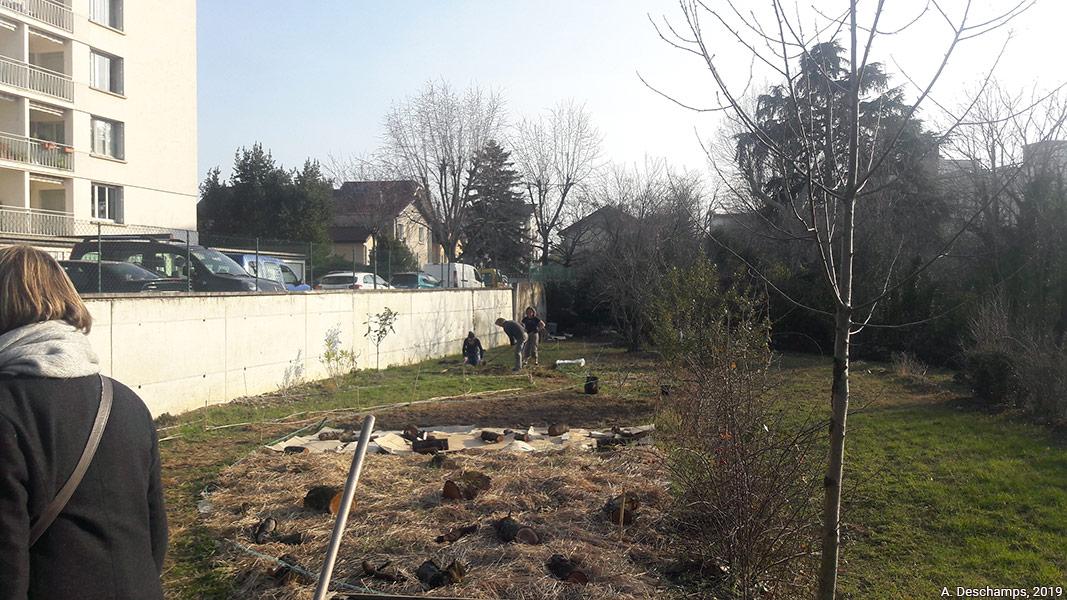 Amélie Deschamps — le jardin en herbes en février 2019 photo