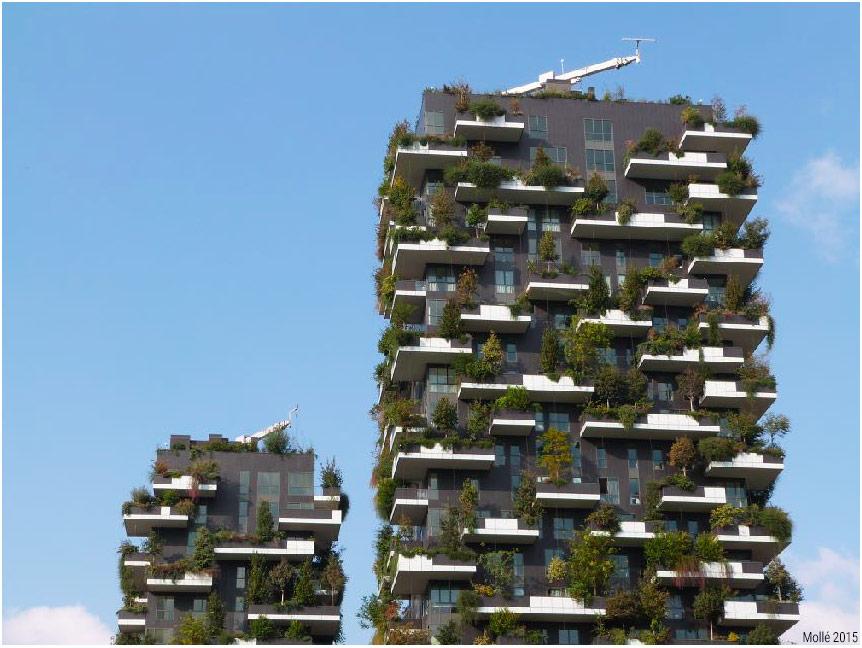 Geoffrey Mollé — photographie bosco verticale Milan