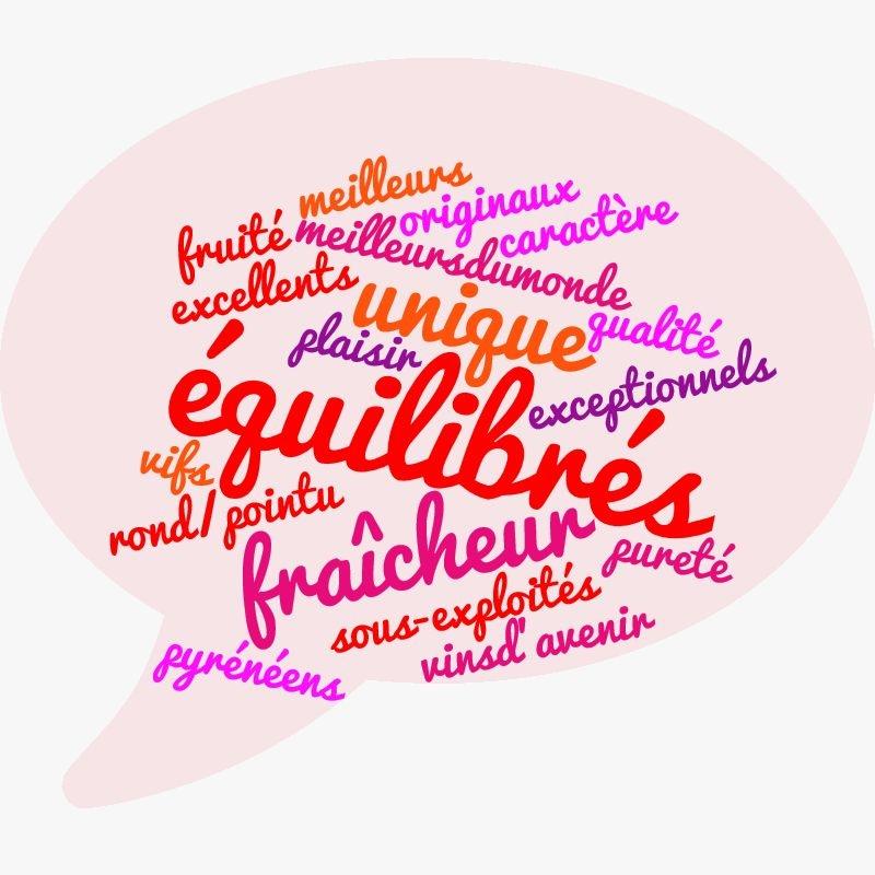 Grégoire Berche — nuage de mots: le jurançon en un mot