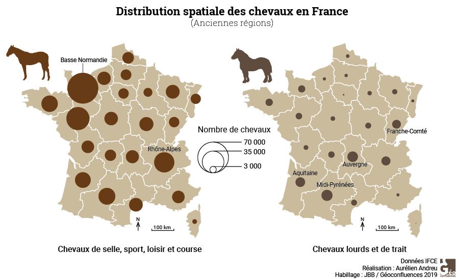Maie Gerardot distribution spatiale des chevaux en France