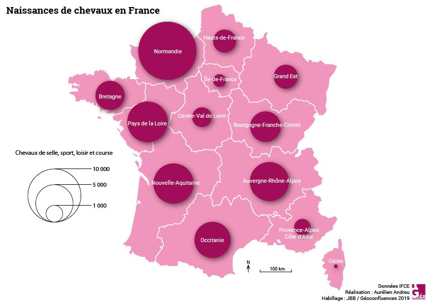Maie Gerardot distribution spatiale des naissance des chevaux en France
