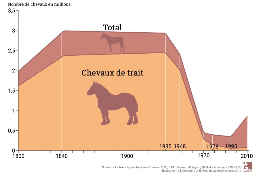 Maie Gerardot – évolution du nombre de chevaux en France