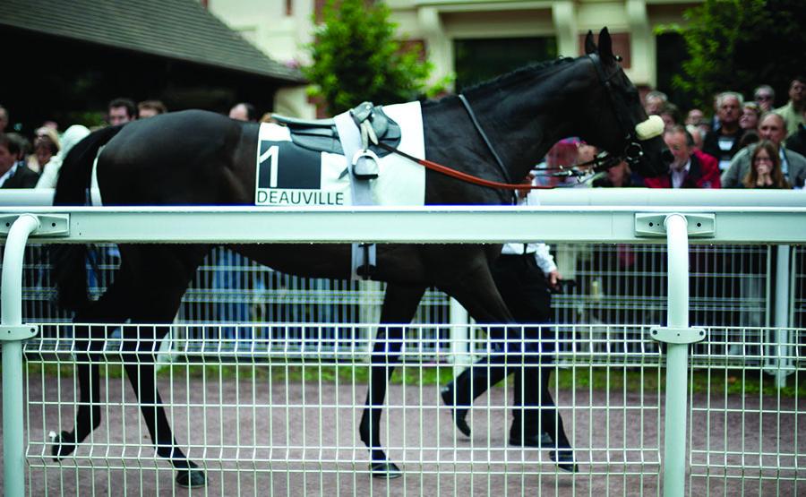 Courses à Deauville