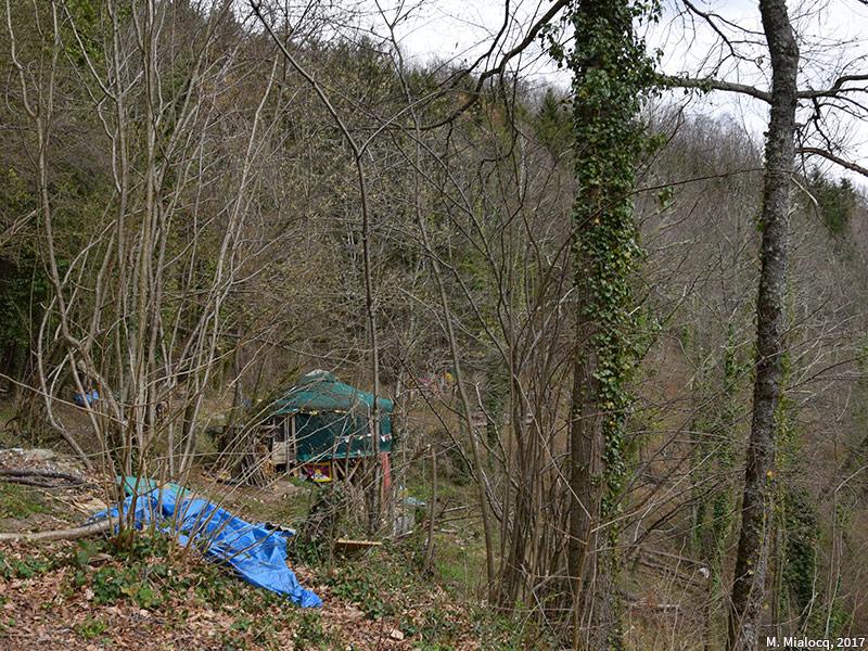 Madeleine Mialocq — yourte isolée dans la forêt