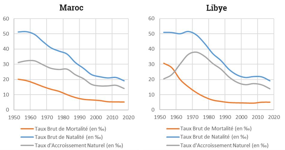 Yoann Doignon — Graphique transition démographique libye maroc