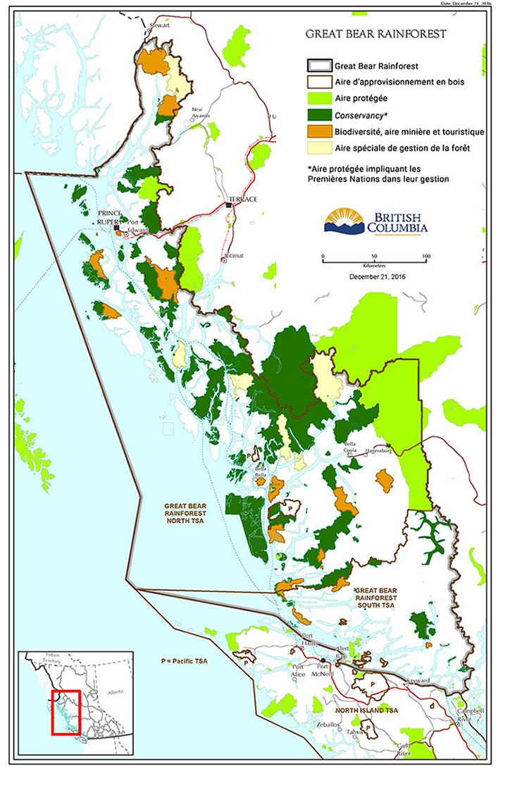 Carte usages de la forêt