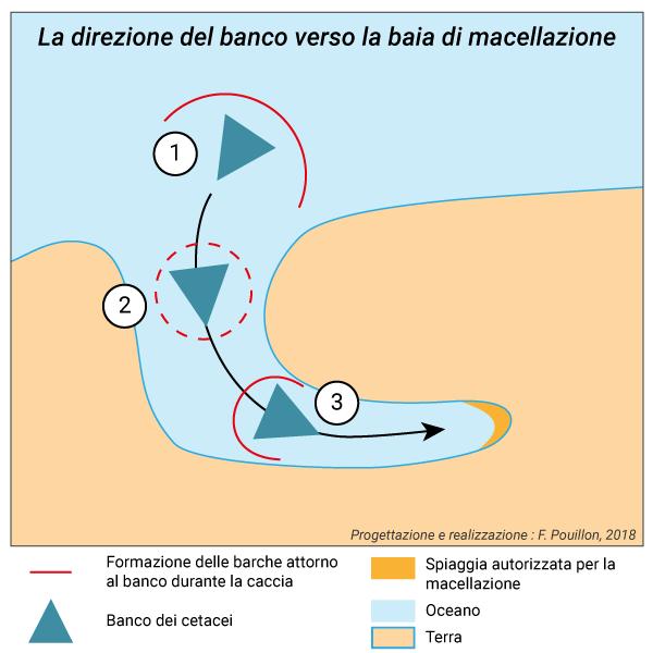 Fabien Pouillon — La direzione del banco verso la baia di macellazione