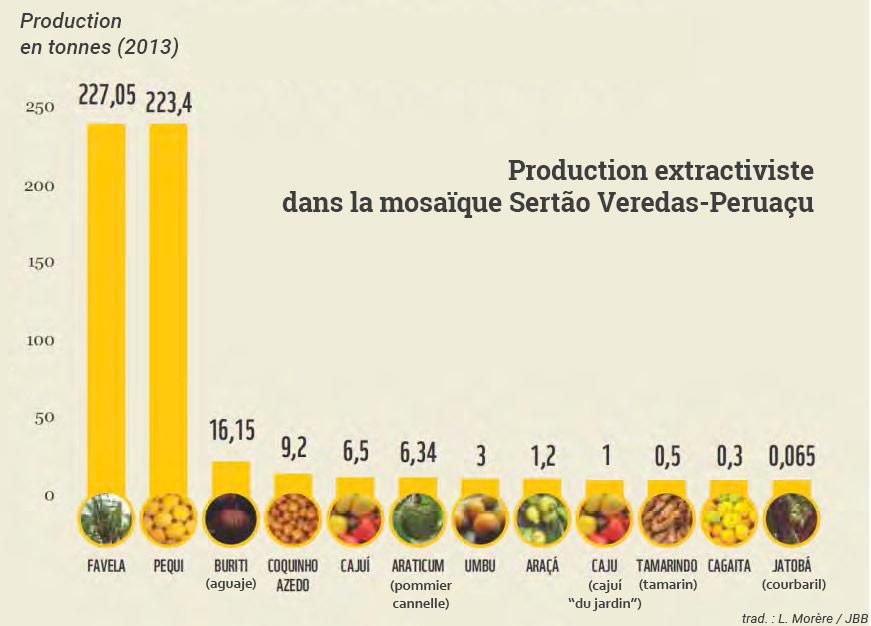 WWF-Brasil —  graphique Fruits récoltés en 2013 dans 48 communautés de la mosaïque Sertão Veredas-Peruaçu