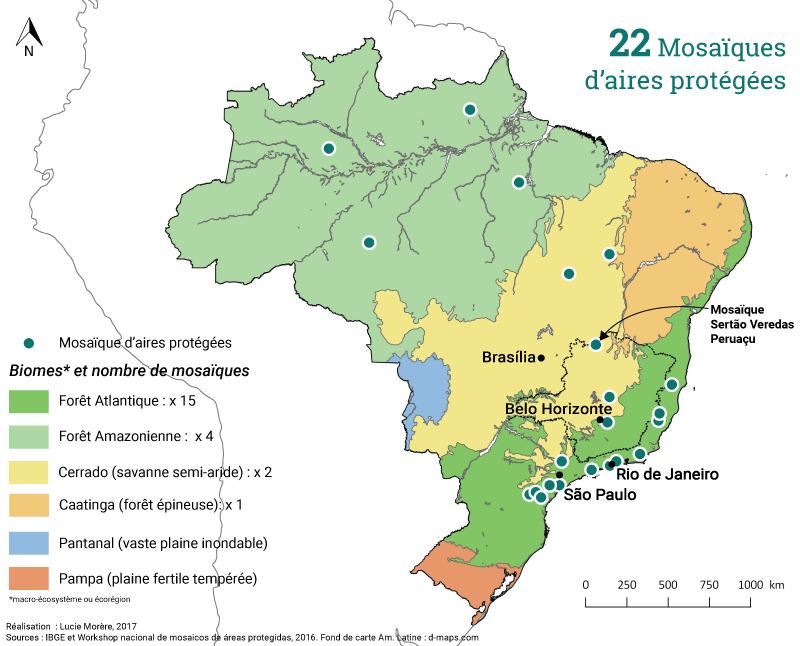 Lucie Morère — carte des 22 mosaïques d'aires protégées au Brésil