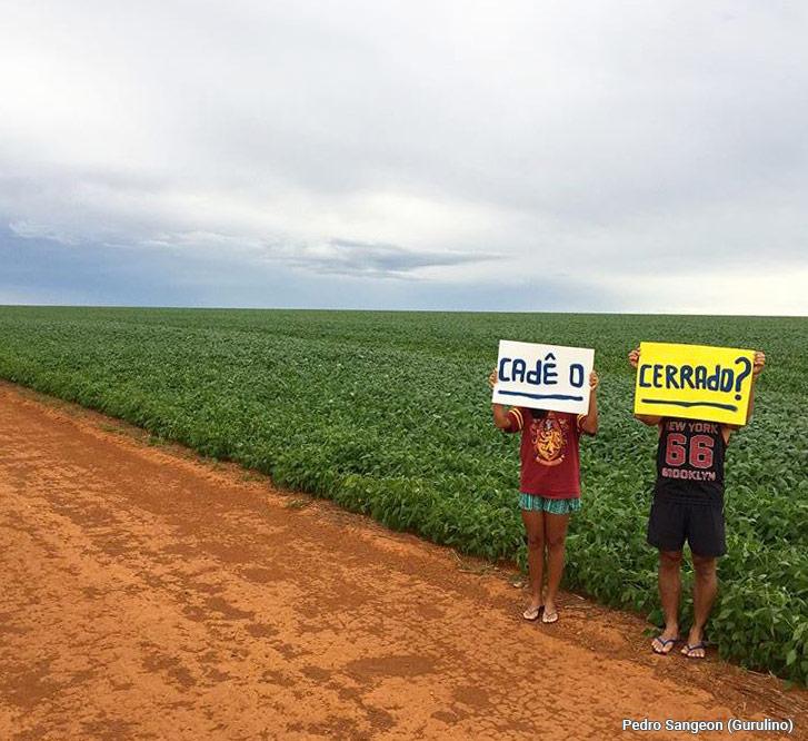 Photographie Mais où est passé le Cerrado?