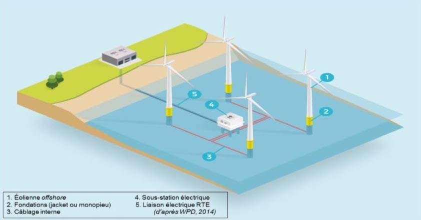 Fonctionnement d'un parc éolien offshore