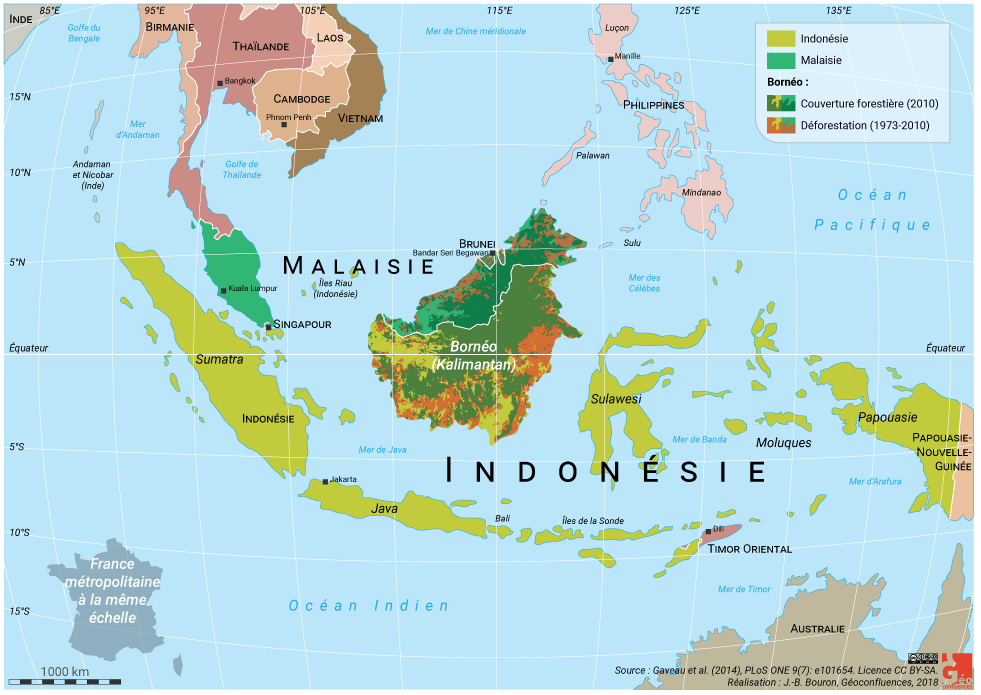 Bornéo localisation et déforestation