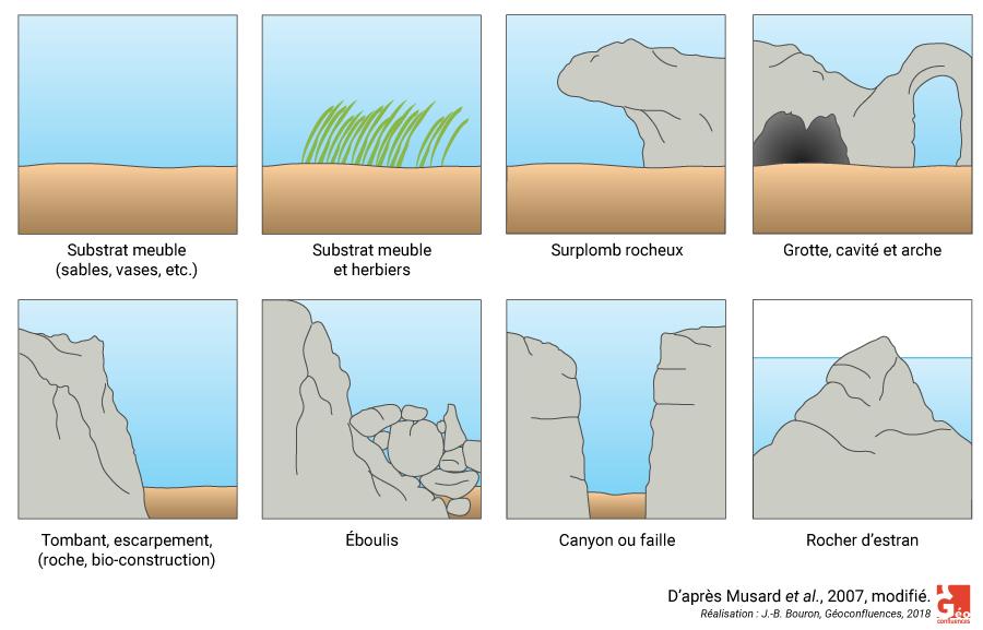 Le paysage sous-marin vu dans sa matérialité biophysique