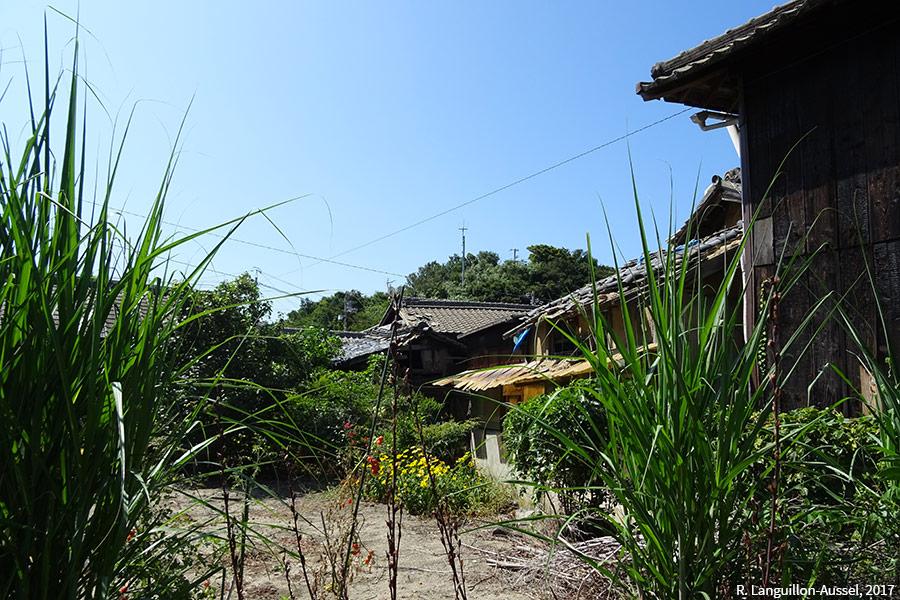 Raphaël Languillon-Aussel — photographie de l'île Ogi-Jima
