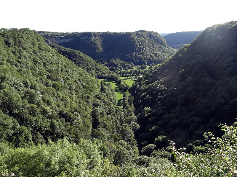 Marylise Cottet paysage Jura vallée