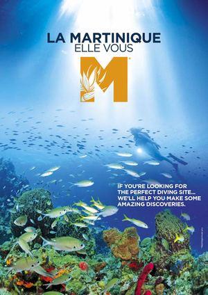 """Campagne """"La Martinique elle vous M"""""""
