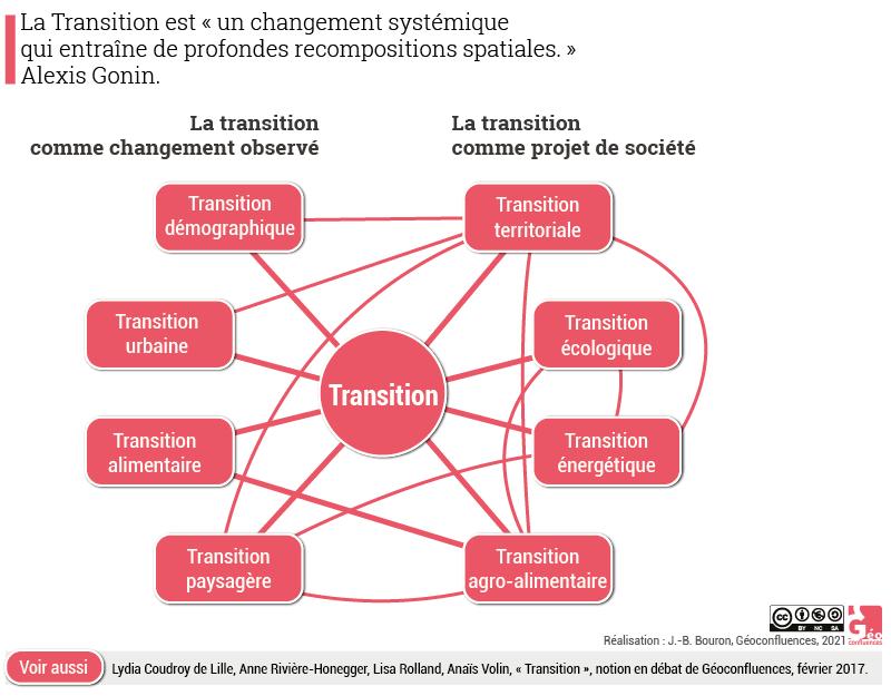 transition organigramme schéma