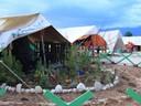 Image à la une : Le jardin et la tente : « habiter » un camp de réfugiés