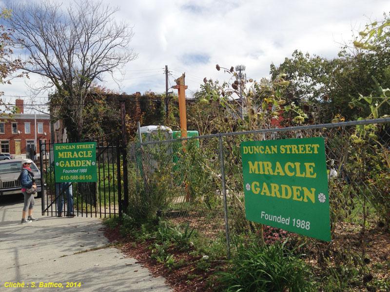 Le jardin, oasis au coeur de Broadway East.
