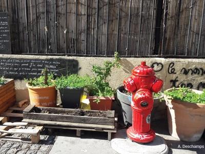 jardinage-vegetalisation-participative-lyon